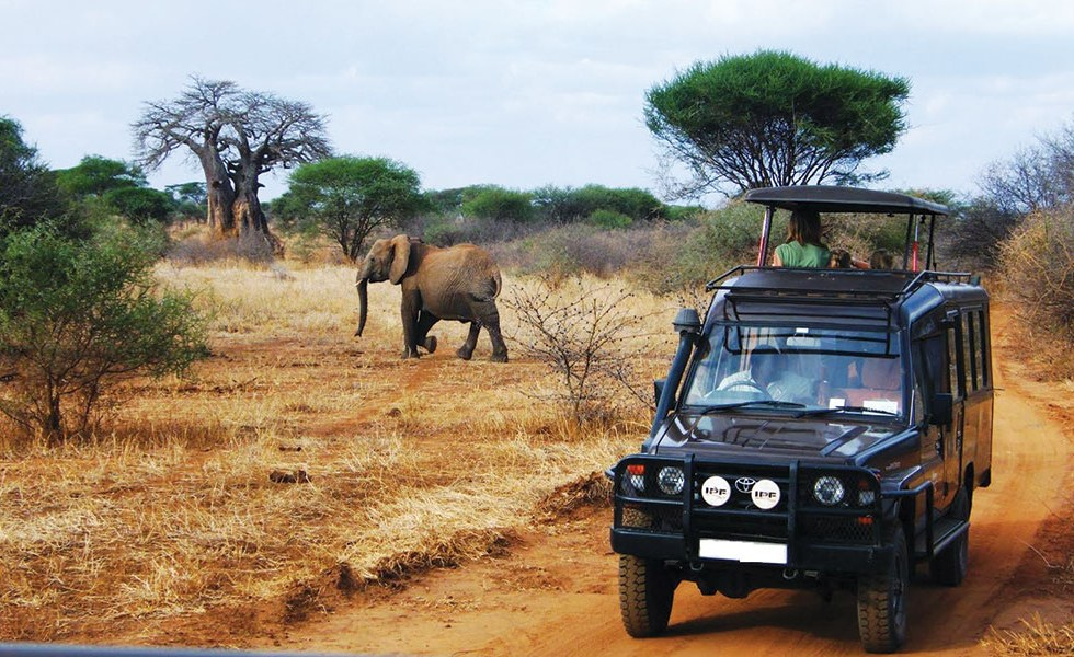 Tanzania to review tourism policy