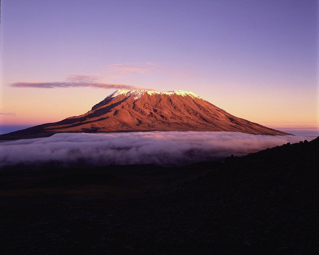 Tanzania's Unforgettable Experience